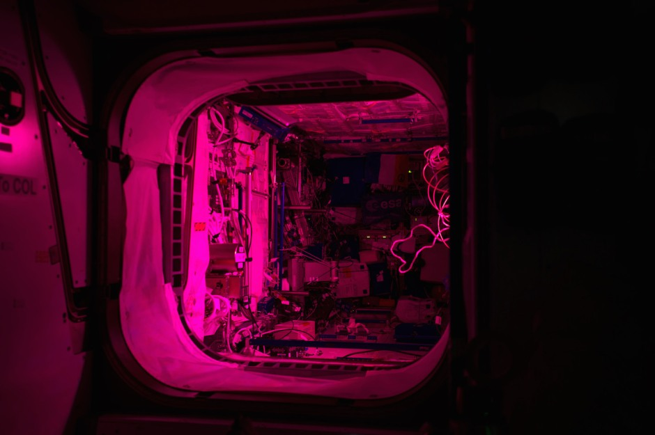 pink-light-from-the-veggie-experiment-illuminates-the-columbus-module-aboard-the-international-space-station